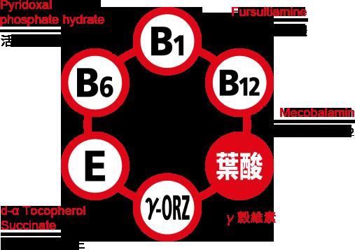 EX GOLD金強效錠含活性B1誘導體及全方位活性B群,有效緩解末梢血液循環不流暢所引起的手腳發麻、神經痛、肌肉或關節疼痛